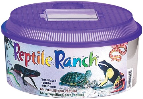 Lees Reptile Ranch (Lee's Reptile Ranch, Round w/Lid)