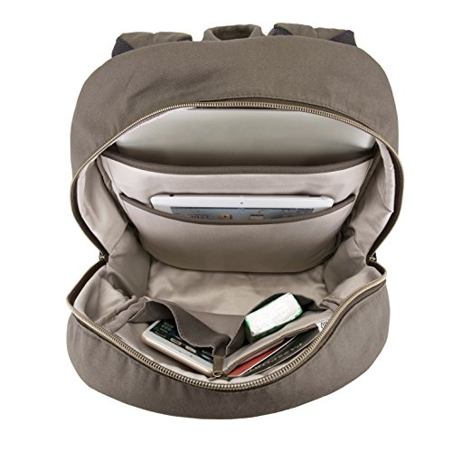 51E%2BVdxNACL - Travelon Anti-Theft Courier Slim Backpack, Stone Gray, One Size