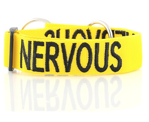 Nervous Yellow Color Coded L-XL Semi-Choke Dog Collar (Give Me Space) PREVENTS Accidents By Warning Others of Your Dog in - Martingale Bandana