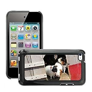 Etui Housse Coque de Protection Cover Rigide pour // M00113965 Conejillos de Indias Rata del animal // Apple ipod Touch 4 4G 4th