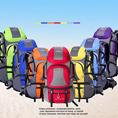 Die neuen Berg Taschen Outdoor-Reisen Sporttasche Rucksack Wanderrucksack Männer und Frauen Grün