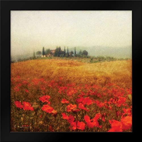 Tuscan Poppies Framed Art Print by Melious, Amy