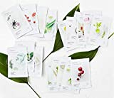 2017 New Innisfree My Real Squeeze Mask Sheets -18 Pattern of Flavour (18 pieces)
