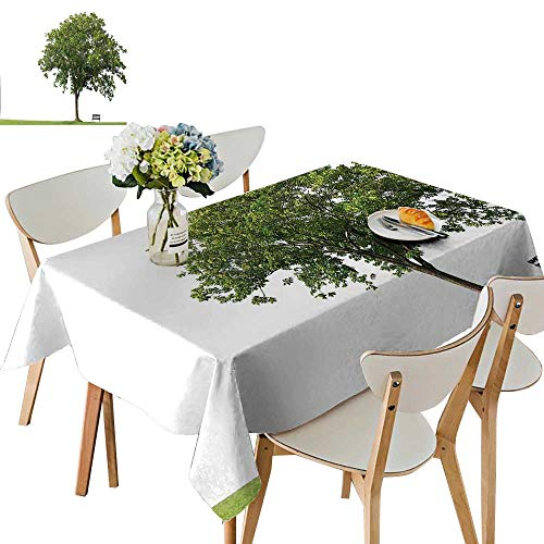 UHOO2018 Solid Tablecloth Bench Under Majestic Tree Looks Like Solitude Symbol in Habitat Environment Design Square/Rectangle Spillproof Fabric Tablecloth,52 x 108inch