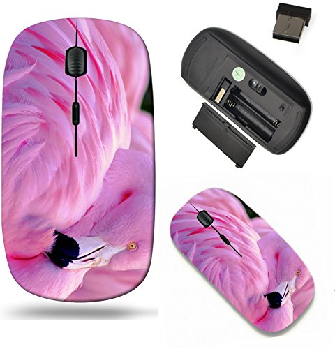 Liili Wireless Mouse Travel 2.4G Wireless Mice with USB Receiver, Click with 1000 DPI for notebook, pc, laptop, computer, mac book IMAGE ID: 25104588 Chilean Flamingo Chilean Beauty