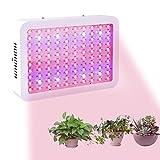 Viugreum 300W LED Grow Light Full Spectrum UV&IR for Plants Veg and Flower Indoor Plant Grow Lights For Sale