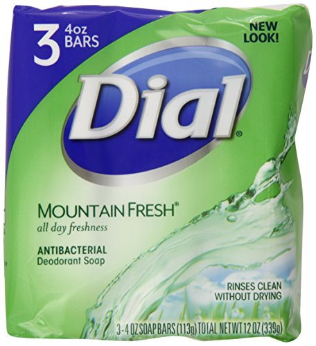 dial bar soap mountain fresh - 4