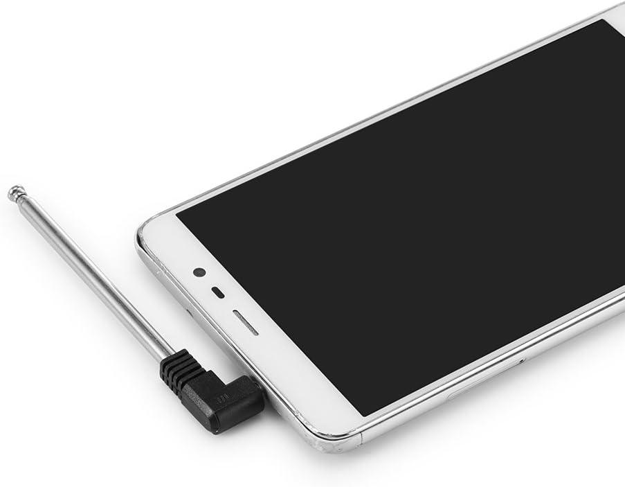 Winbang - Antena FM de 3,5 mm para coche: Amazon.es: Electrónica