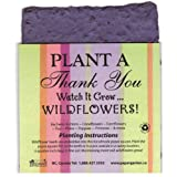 Plant a Thank You Gift Singles 4 pack