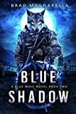 Bargain eBook - Blue Shadow