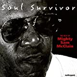 Soul Survivors-Best of Mighty