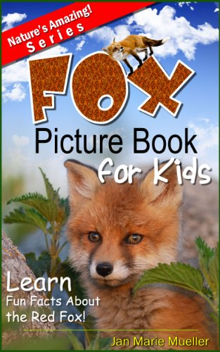 Fox - Amazing Facts about Fox | Kids Picture Book