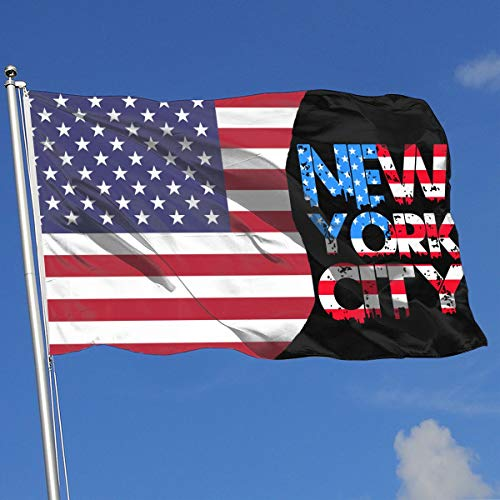 TAOHJS76 Funny Outdoor/Indoor Decorative Flag New York City Retro Skyline-2 100% Polyester Single Layer Translucent Flags 3 X 5 -