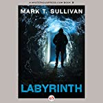Labyrinth | Mark T. Sullivan