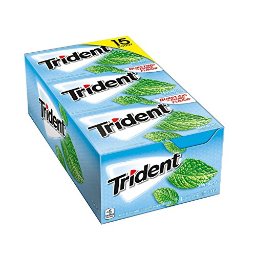 Trident Mint Bliss Sugar Free Gum 15/14 Piece Packs (Pack of 2) Total 420 sticks