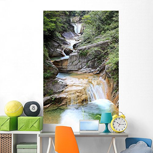 Wallmonkeys Water Falls and Cascades Wall Mural Peel and Stick Graphic (72 in H x 48 in W) WM219827
