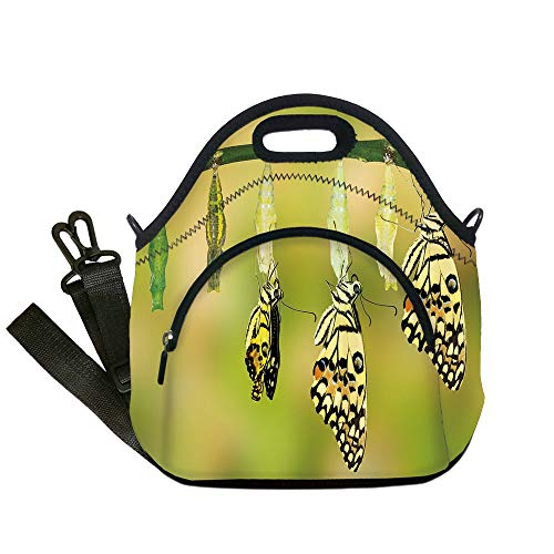 Insulated Lunch Bag,Neoprene Lunch Tote Bags,Swallowtail Butterfly,Transformation of Lime Butterfly Natural Life Cycle Theme Decorative,Yellow Green Black,for Adults and -