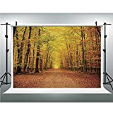 Photo Studio,Fall,Muslin Collapsible Backdrop Background for Photography, Video and Television,10x20ft,Seasonal Park Foliage Pathway Scenic Environment Leaves and Branches