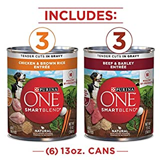 Purina ONE Natural, High Protein Gravy Wet Dog Food Variety Pack, SmartBlend Tender Cuts in Gravy - (2 Packs of 6) 13 oz. Cans