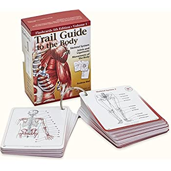 Trail guide to the body flash cards 5th edition volume 2 muscles.