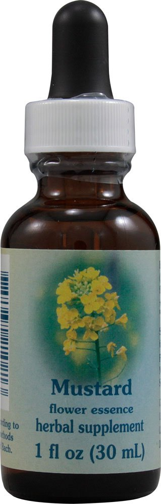 Flower Essence Services Mustard Dropper Herbal Supplements, 1 Ounce
