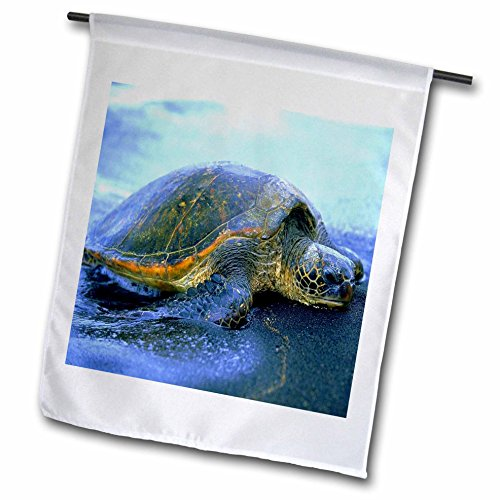 (3dRose Florene Animals - Hawaiian Sea Turtle - 18 x 27 inch Garden Flag (fl_80273_2))