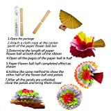 """Cinco De Mayo Decorations Fiesta Tissue Pom Paper Flowers - Mexican Carnival Rainbow Theme Party Supplies 16"""" (Set of 12)"""