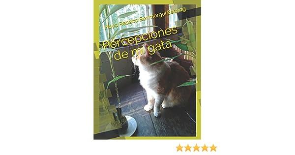 Amazon.com: Percepciones de mi gata (Spanish Edition) (9781549534324): Maya Rebeca Benmergui Esayag: Books