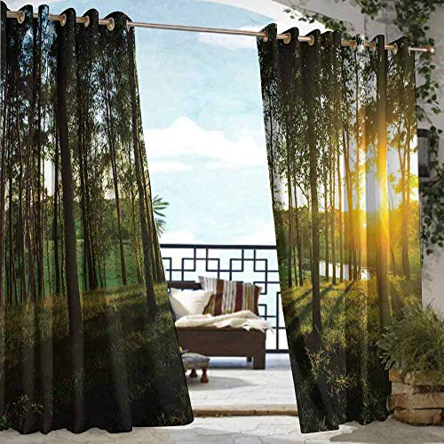 DILITECK Pergola Curtain Forest Sunset in The Woods Theme Autumn and River Comes into View at Distances Room Darkening Thermal W96 xL72 Dark Green and Yellow (Bedroom Furniture Sets Dunelm)