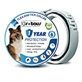 Best Flea Collar For Dogs - GROTAUS Flea and Tick Collar for Dogs Review