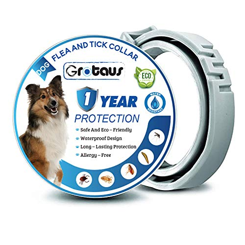 GROTAUS Flea and Tick Collar for Dogs - Safe and Effective Flea and Tick Control Collar for All Dog Sizes - Waterproof, Adjustable and Natural Flea Collar with 12 Months Flea and Tick Prevention