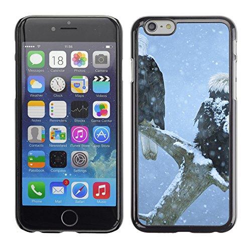 "Premio Sottile Slim Cassa Custodia Case Cover Shell // V00002899 aigles à tête blanche // Apple iPhone 6 6S 6G 4.7"""