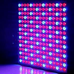 LED Grow luz 14W rojo azul Full Spectrum Led crecimiento de plantas semillas de flores de luz hidroponía interior