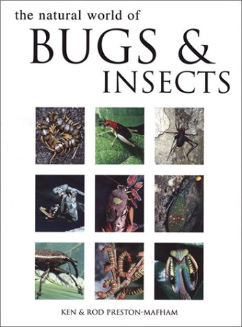 Natural World of Bugs and Insects
