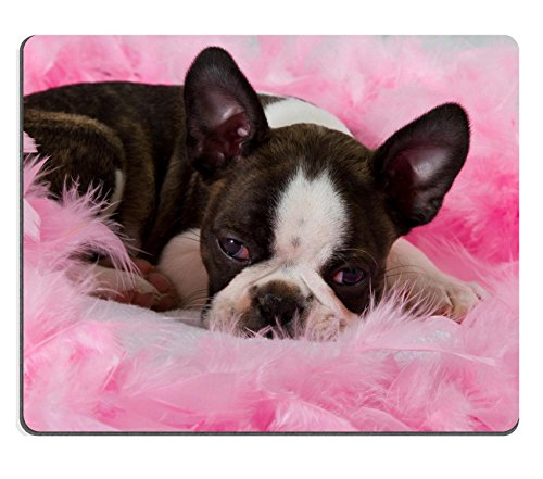(MSD Natural Rubber Mousepad Boston terrier puppy sleep among pink feathers tired IMAGE 19451271)