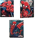 Spiderman Set of 3 Types of Document Files (Licensed Merchandise)