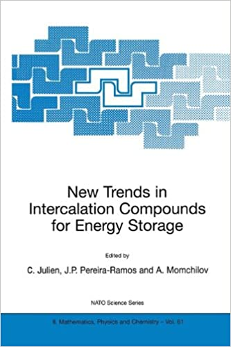 New Trends in Intercalation Compounds for Energy Storage (Nato Science Series II:)