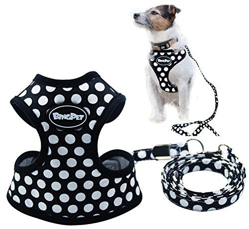Puppy Harness Leash Small Black product image