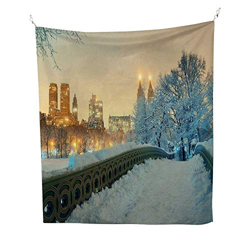 (Winterfunny tapestryCentral Park Winter Season with Skyscrapers and Snow Bow Bridge Manhattan New York 60W x 80L inch Quote Tapestry)