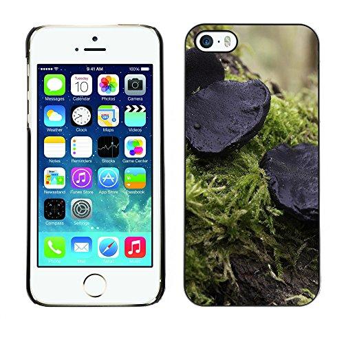Premio Sottile Slim Cassa Custodia Case Cover Shell // F00028399 champignon noir // Apple iPhone 5 5S 5G
