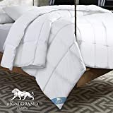 Alternative Comforter - MGM Grand CF-106-3FQ All All Season Goose Down Alternative Comforter, Full/Queen, White