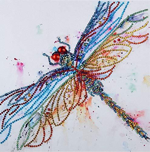 - Diamond Painting DIY 5D Special Shape Rhinestones, ABEUTY Colorful Dragonflys, Partial Drill Crystal Diamond Dotz Kits