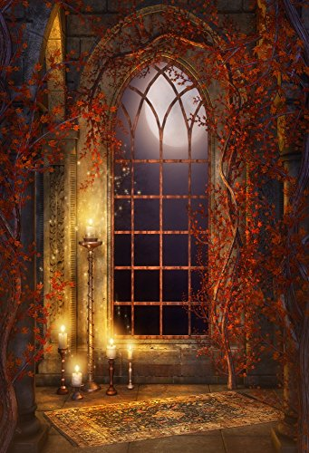 Laeacco Vinyl Thin Backdrop 5x7FT Photography Background Shabby House Arched Window Vines Candlelight Moonnight Scene Halloween Festival Children Adults Background 1.5(W)x2.2(H)m Studio (Halloween Background Scenes)