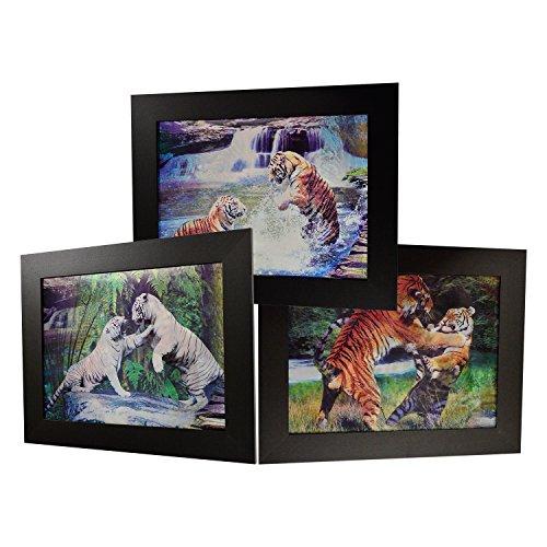 3D Lenticular Framed Animal Picture (Tiger) by White Deer