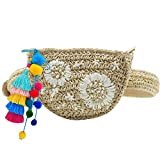 Donalworld Lady's Straw Summer Purse Beach Bag Willow Tassel Shoulder Bag White