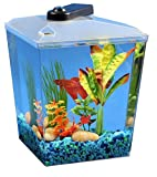 Koller Products BettaTank 1-Gallon Fish Tank with LED Lighting