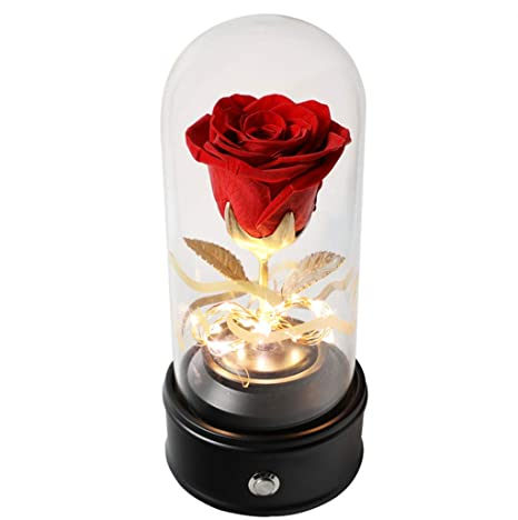 JHNEA La Bella Y La Bestia Rosa Cristal Enchanted Rose Red Rose ...