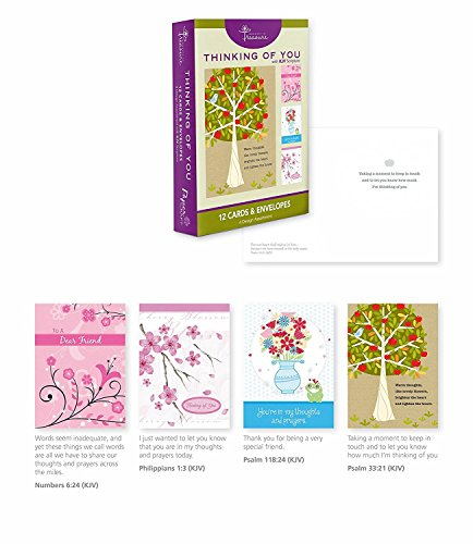 12-Count-Boxed-Cards-w-Scriptures-Thinking-of-You-Bulk-Greeting-Cards-w-KJV-Scriptures-Envelopes-Included