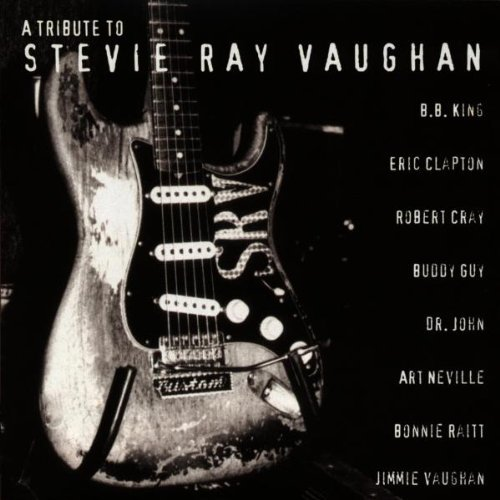 A Tribute to Stevie Ray Vaughan by Stevie Ray Vaughan (1996-08-05) (Eric Clapton Tribute To Stevie Ray Vaughan)