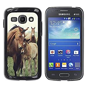 LOVE FOR Samsung Galaxy Ace 3 Horse Cub Nature Foal Animal Summer Personalized Design Custom DIY Case Cover